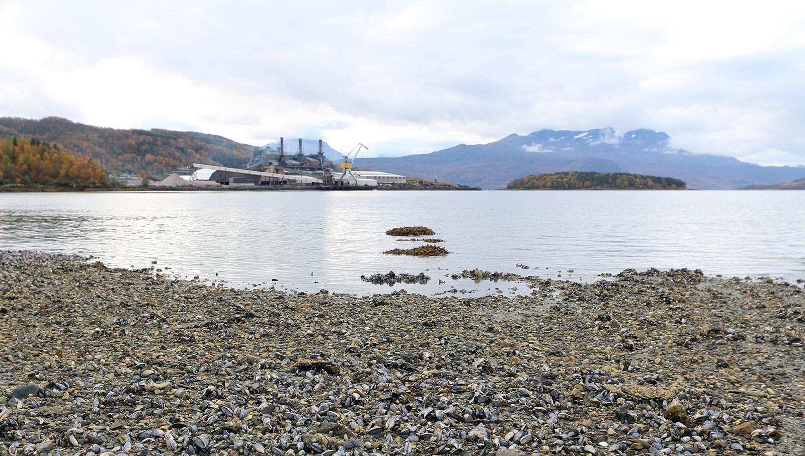 Finnfjordbotn in Lenvik.